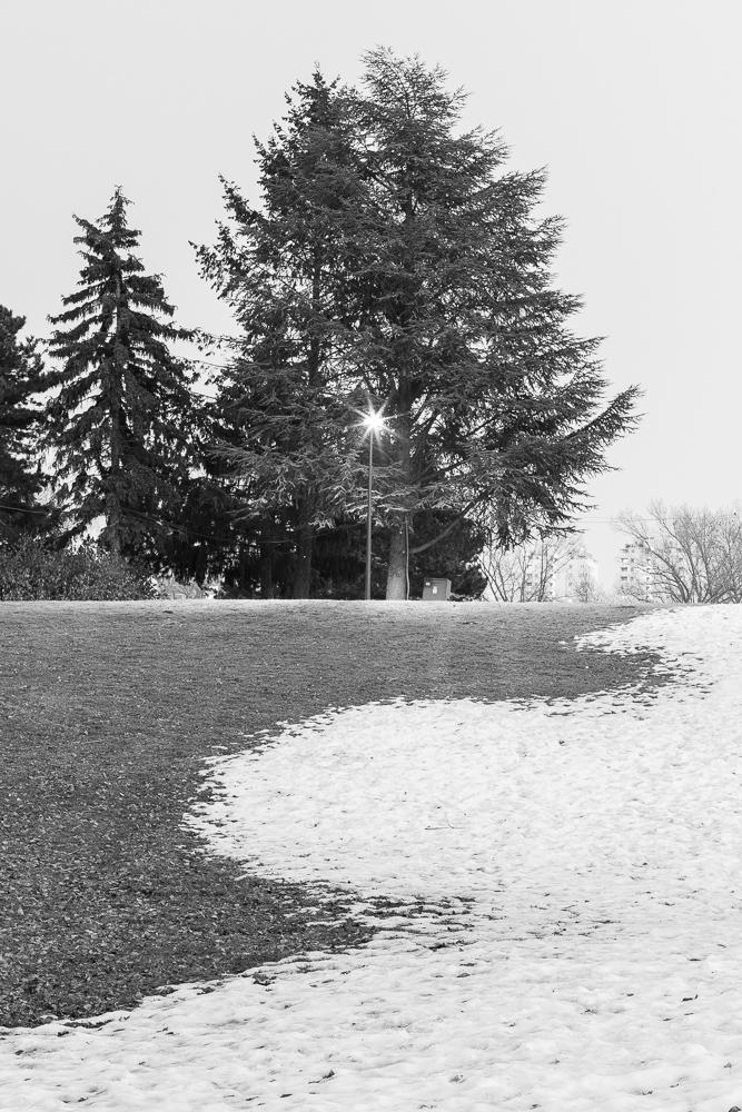 Fotoreportage Donaupark