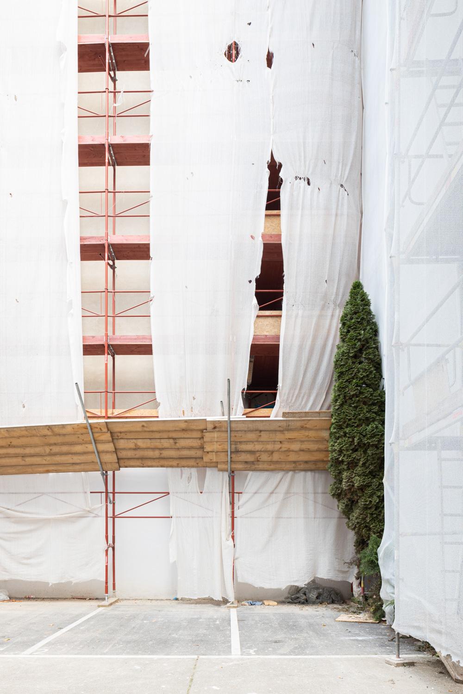Reportagefotografie Baum in der Stadt